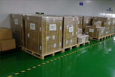 Our Company Enlarge Export to the PoE Market in Eu